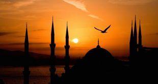 اسلام رواداری ،امن و سلامتی اور احترام ِ انسانیت کا دین