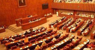 قومی اسمبلی کے بعدسینیٹ نے بھی نیا پاکستان ہاؤسنگ اینڈ ڈیولپمنٹ اتھارٹی بل 2019ء منظور کرلیا