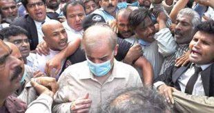 اپوزیشن لیڈر شہباز شریف کے جسمانی ریمانڈ پر فیصلہ محفوظ