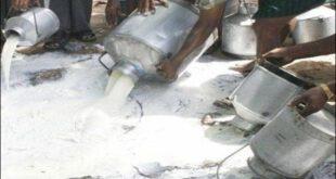 پنجاب فوڈ اتھارٹی کا بڑا کریک ڈاؤن، 79 ہزار لیٹر ملاوٹی دودھ تلف